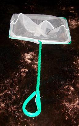 Epuisette de piscine. Source : http://data.abuledu.org/URI/533ed042-epuisette