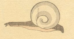 Escargot. Source : http://data.abuledu.org/URI/47f52c89-escargot