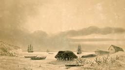 Établissement des baleiniers sur l'île Quiriquina au Chili en 1838. Source : http://data.abuledu.org/URI/598068f1-etablissement-des-baleiniers-sur-l-ile-quiriquina-au-chili-en-1838