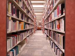 Étagères de bibliothèque. Source : http://data.abuledu.org/URI/502e8b8c-etageres-de-bibliotheque