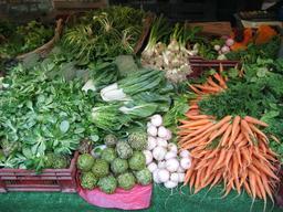 Étalage de légumes d'été. Source : http://data.abuledu.org/URI/5041eb4e-etalage-de-legumes-d-ete