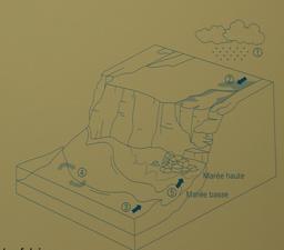 Exposition sur l'érosion côtière en Aquitaine. Source : http://data.abuledu.org/URI/55c138e5-exposition-sur-l-erosion-cotiere-en-aquitaine