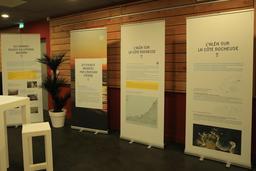 Exposition sur l'érosion côtière en Aquitaine. Source : http://data.abuledu.org/URI/55c13ef0-exposition-sur-l-erosion-cotiere-en-aquitaine