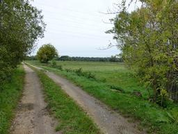 Eysines, Chemin des maraîchers. Source : http://data.abuledu.org/URI/5630799e-eysines-chemin-des-maraichers