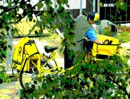 Facteur à bicyclette en Allemagne. Source : http://data.abuledu.org/URI/5344045d-facteur-a-bicyclette-en-allemagne