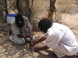 Faire du feu dans le désert. Source : http://data.abuledu.org/URI/52d1b395-faire-du-feu-dans-le-desert