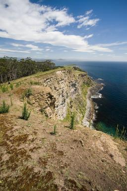 Falaise des fossiles de l'île de Santa Maria en Tasmanie. Source : http://data.abuledu.org/URI/54ba879c-falaise-des-fossiles-de-l-ile-de-santa-maria-en-tasmanie