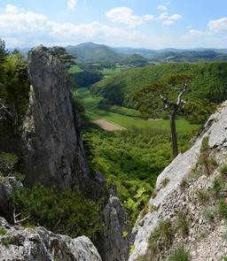Falaises de Peilstein en Autriche. Source : http://data.abuledu.org/URI/592297cd-falaises-de-peilstein-en-autriche