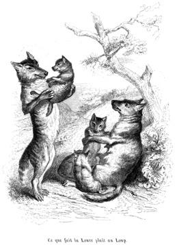 Famille de loups. Source : http://data.abuledu.org/URI/53501cc1-famille-de-loups