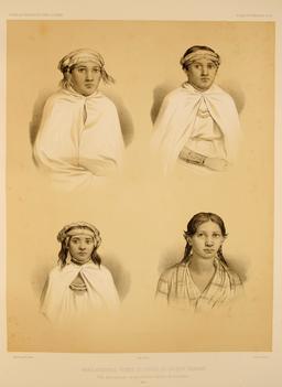 Femmes Araucaniennes au Chili en 1838. Source : http://data.abuledu.org/URI/59806cb4-femmes-araucaniennes-au-chili-en-1838