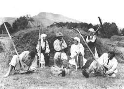 Fenaison en Roumanie en 1920. Source : http://data.abuledu.org/URI/5156dccd-fenaison-en-roumanie-en-1920