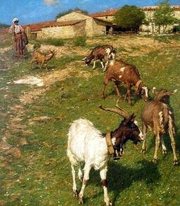 Ferme provençale. Source : http://data.abuledu.org/URI/47f4be9d-ferme-proven-ale