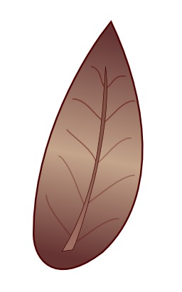 Feuille de tabac. Source : http://data.abuledu.org/URI/50df85c2-feuille-de-tabac