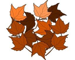 Feuilles d'automne. Source : http://data.abuledu.org/URI/540432e3-feuilles-d-automne