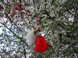 Fils de Martenitsa suspendus dans un arbre en fleurs. Source : http://data.abuledu.org/URI/55182791-fils-de-martenitsa-suspendus-dans-un-arbre-en-fleurs