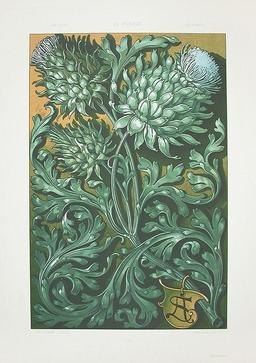 Fleurs d'artichauts. Source : http://data.abuledu.org/URI/50fa8ca0-fleurs-d-artichauts