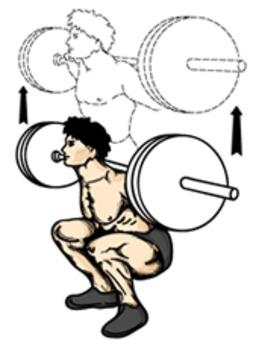 Flexion sur les jambes. Source : http://data.abuledu.org/URI/503e6657-flexion-sur-les-jambes