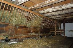 Foin pour bétail. Source : http://data.abuledu.org/URI/5157001b-foin-pour-betail
