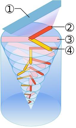Force de Coriolis et courants océaniques. Source : http://data.abuledu.org/URI/52c72e64-force-de-coriolis-et-courants-oceaniques
