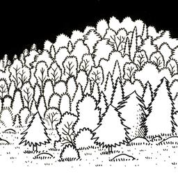 Forêt. Source : http://data.abuledu.org/URI/52d72fa3-foret