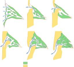 Formation du bassin d'Arcachon. Source : http://data.abuledu.org/URI/512e17bb-formation-du-bassin-d-arcachon