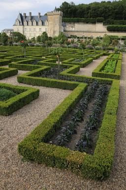 Formes géométriques aux jardins de Villandry. Source : http://data.abuledu.org/URI/55e751b8-formes-geometriques-aux-jardins-de-villandry