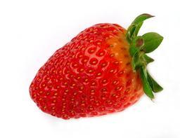 Fraise. Source : http://data.abuledu.org/URI/501bddf4-fraise