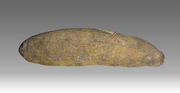 Fruit du boabab. Source : http://data.abuledu.org/URI/52e55340-fruit-du-boabab