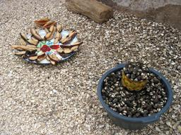 Fruits de mer et coquillages au Sénégal. Source : http://data.abuledu.org/URI/52e4d8e6-fruits-de-mer-et-coquillages-au-senegal