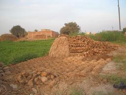 Fumier de vache. Source : http://data.abuledu.org/URI/54120851-fumier-de-vache