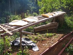Galettes de cassave. Source : http://data.abuledu.org/URI/52d99df8-galettes-de-cassave-