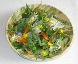 Gargouillou de légumes. Source : http://data.abuledu.org/URI/505cb842-gargouillou-de-legumes