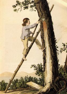 Gemmeur du XIXème siècle. Source : http://data.abuledu.org/URI/512dc9f7-gemmeur-du-xixeme-siecle