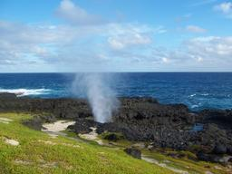 Geyser à Sao Tome e Principe. Source : http://data.abuledu.org/URI/55310268-geyser-a-sao-tome-e-principe