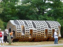 Gite du tronc creux dans le parc du Bourgailh. Source : http://data.abuledu.org/URI/5826c9b8-gite-du-tronc-creux-dans-le-parc-du-bourgailh