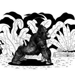 Croquis de gorille. Source : http://data.abuledu.org/URI/53fdd9be-gorille