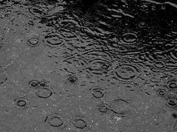 Gouttes de pluie sur la route. Source : http://data.abuledu.org/URI/5232c53c-gouttes-de-pluie-sur-la-route