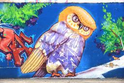 Graffiti de hibou au Brésil. Source : http://data.abuledu.org/URI/5353aa77-graffiti-de-hibou-au-bresil