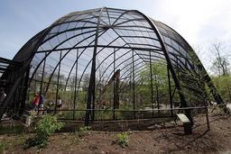 Grande cage à oiseaux. Source : http://data.abuledu.org/URI/503a42b8-grande-cage-a-oiseaux