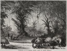 Grande serre du Champ-de-Mars en 1867. Source : http://data.abuledu.org/URI/587045d9-grande-serre-du-champ-de-mars-en-1867