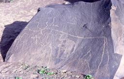 Gravures rupestres en Mauritanie. Source : http://data.abuledu.org/URI/552e2279-gravures-rupestres