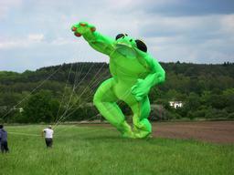 Grenouille géante. Source : http://data.abuledu.org/URI/5351b3c0-grenouille-geante