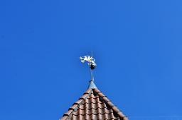Griffon girouette. Source : http://data.abuledu.org/URI/51a89940-griffon-girouette