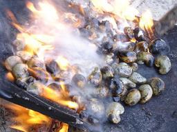 Grillage des noix de cajou. Source : http://data.abuledu.org/URI/520a2dee-grillage-des-noix-de-cajou