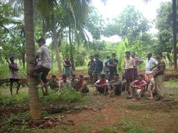 Grimper au cocotier. Source : http://data.abuledu.org/URI/502a17b7-grimper-au-cocotier
