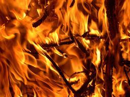 Gros-plan sur flammes. Source : http://data.abuledu.org/URI/52bf1e62-gros-plan-sur-flammes