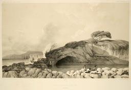 Grotte sur l'île Enderby dans les Auckland. Source : http://data.abuledu.org/URI/59819fe9-grotte-sur-l-ile-enderby-dans-les-auckland