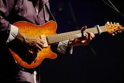 Guitare électrique. Source : http://data.abuledu.org/URI/53b46158-guitare-electrique