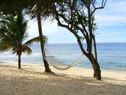 Hamac vide sur une plage tropicale déserte. Source : http://data.abuledu.org/URI/53526e67-hamac-vide-sur-une-plage-tropicale-deserte