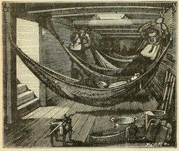 Hamacs des matelots à bord d'un navire. Source : http://data.abuledu.org/URI/524dc8b3-hamacs-des-matelots-a-bord-d-un-navire